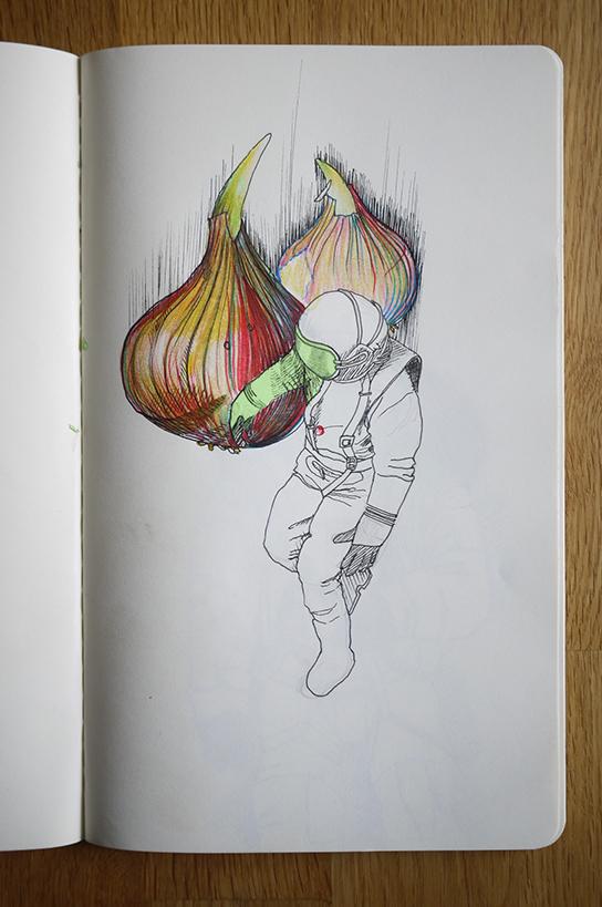 13cdsf_Onionaut_01