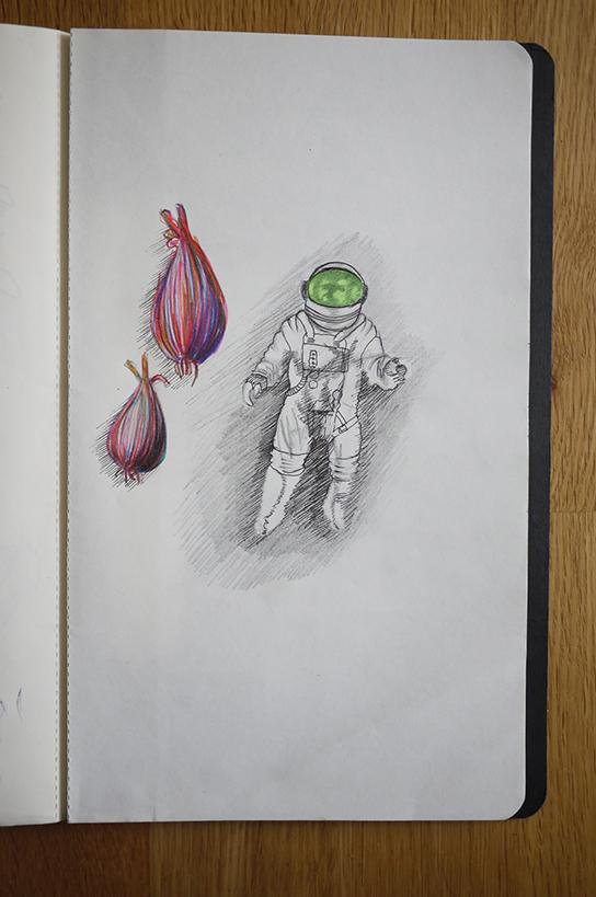 Onionauts
